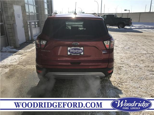 2018 Ford Escape SEL (Stk: 17174) in Calgary - Image 6 of 21