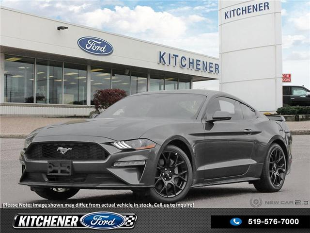 2019 Ford Mustang EcoBoost (Stk: 9M0210) in Kitchener - Image 1 of 23