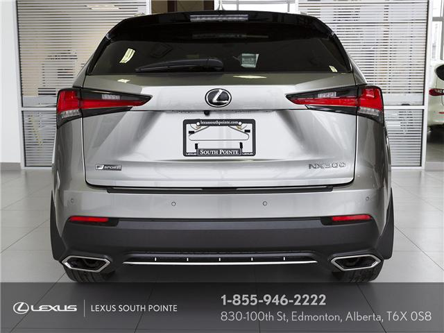2019 Lexus NX 300 Base (Stk: L900087) in Edmonton - Image 6 of 21