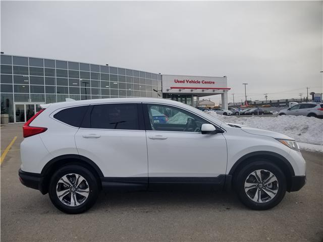 2019 Honda CR-V LX (Stk: 2190570) in Calgary - Image 2 of 9