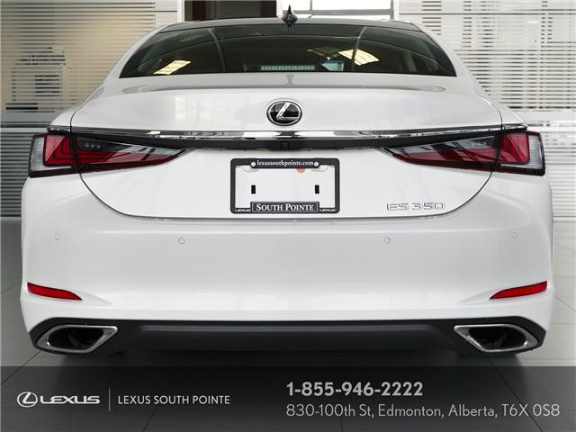 2019 Lexus ES 350  (Stk: L900059) in Edmonton - Image 6 of 23