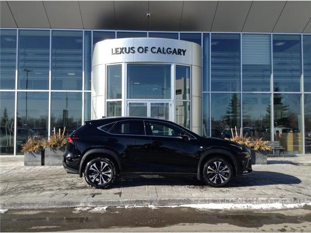 2019 Lexus NX 300 Base (Stk: 190079) in Calgary - Image 1 of 7