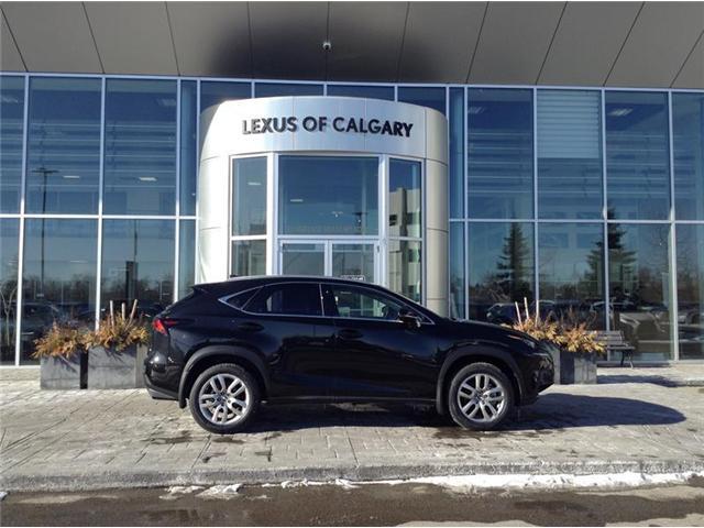 2019 Lexus NX 300 Base (Stk: 190184) in Calgary - Image 1 of 7