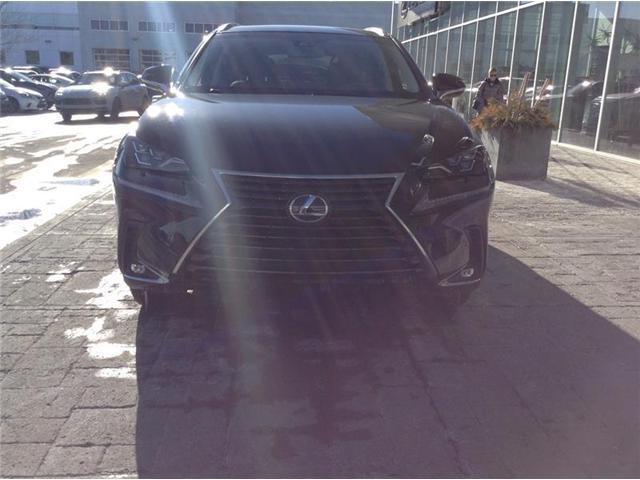 2019 Lexus NX 300 Base (Stk: 190184) in Calgary - Image 2 of 7