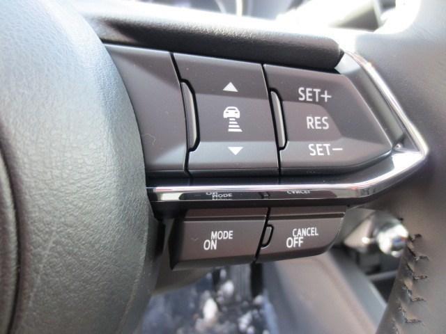 2019 Mazda CX-5 GT (Stk: M19049) in Steinbach - Image 28 of 43
