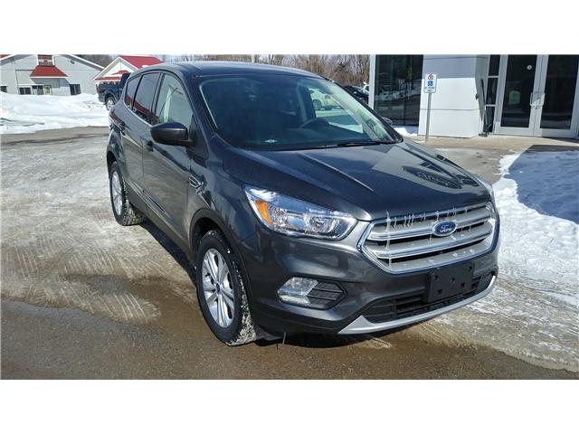 2019 Ford Escape SE (Stk: ES1191) in Bobcaygeon - Image 2 of 24