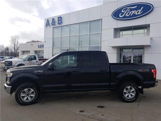 2015 Ford F-150 XLT (Stk: 18238A) in Perth - Image 2 of 13