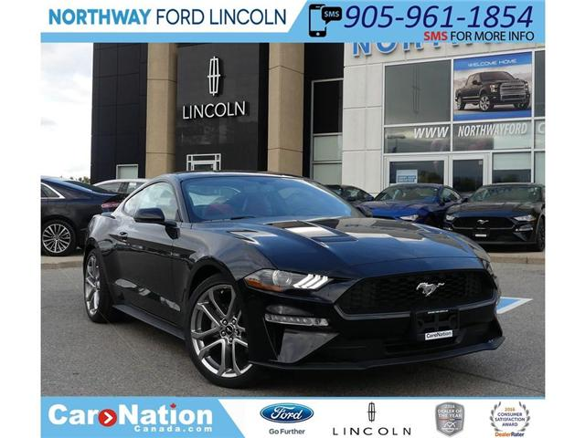2019 Ford Mustang | PREMIUM | 2.3L I-4 | RED LEATHER | (Stk: MU90849) in Brantford - Image 1 of 19