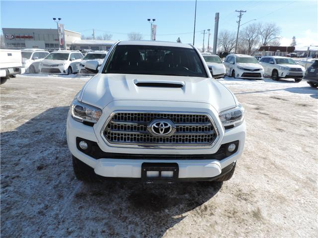 2017 Toyota Tacoma SR5 (Stk: 191631) in Brandon - Image 3 of 21