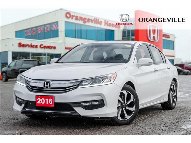 2016 Honda Accord EX-L (Stk: V19061A) in Orangeville - Image 1 of 20