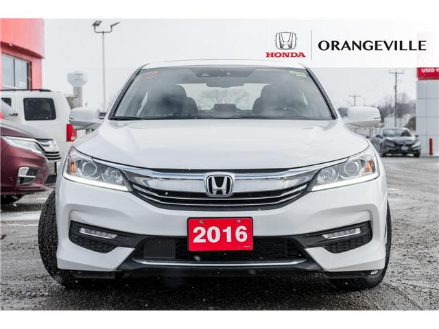 2016 Honda Accord EX-L (Stk: V19061A) in Orangeville - Image 2 of 20