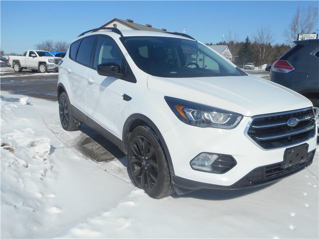 2017 Ford Escape SE (Stk: ) in Cameron - Image 2 of 10