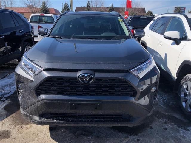 2019 Toyota RAV4 XLE (Stk: 9RV466) in Georgetown - Image 2 of 5