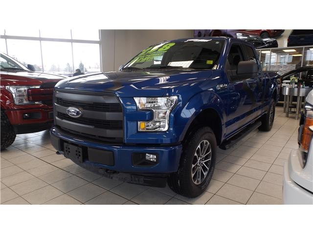 2017 Ford F-150 XLT (Stk: P46750) in Kanata - Image 1 of 13