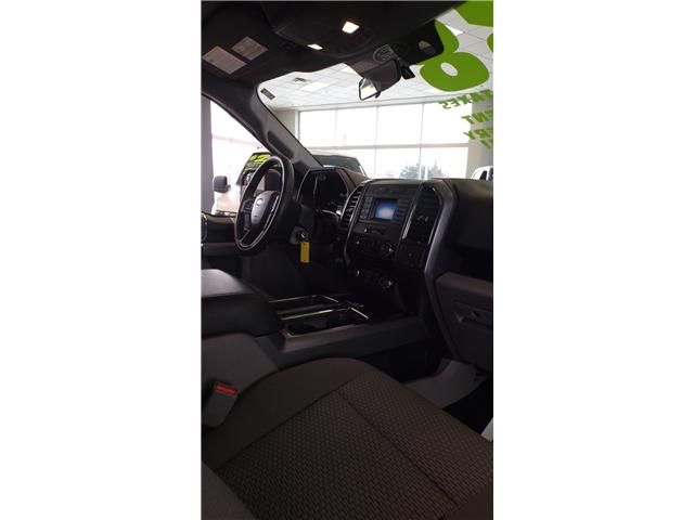 2017 Ford F-150 XLT (Stk: P46750) in Kanata - Image 12 of 13