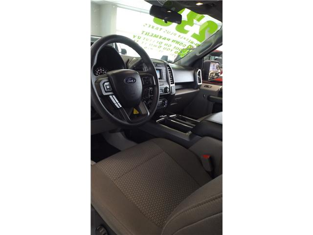 2017 Ford F-150 XLT (Stk: P46750) in Kanata - Image 9 of 13