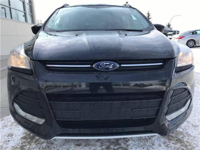 2016 Ford Escape SE (Stk: NE146) in Calgary - Image 2 of 17