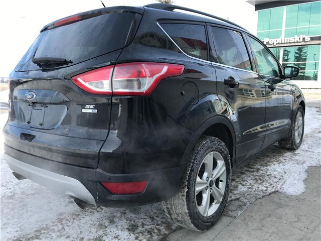 2016 Ford Escape SE (Stk: NE146) in Calgary - Image 4 of 17