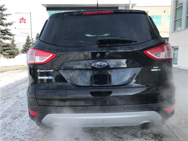2016 Ford Escape SE (Stk: NE146) in Calgary - Image 5 of 17