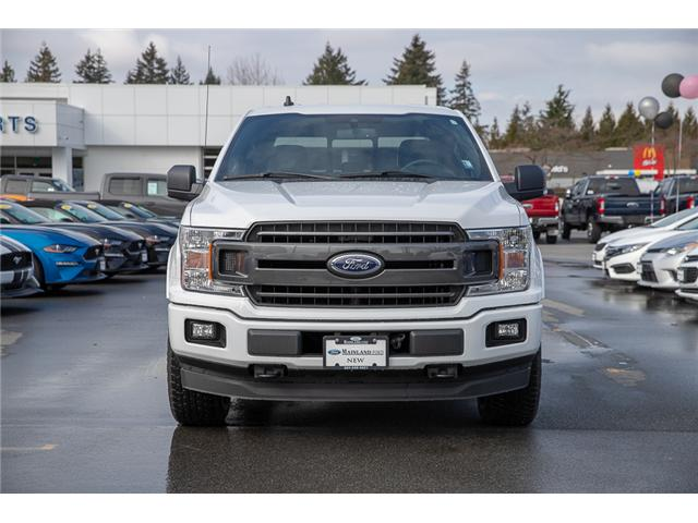 2019 Ford F-150 XLT (Stk: 9F19249) in Vancouver - Image 3 of 30