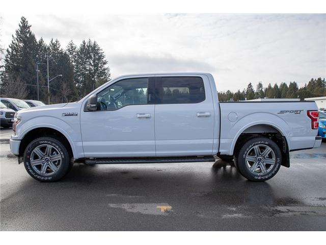 2019 Ford F-150 XLT (Stk: 9F19249) in Vancouver - Image 4 of 30