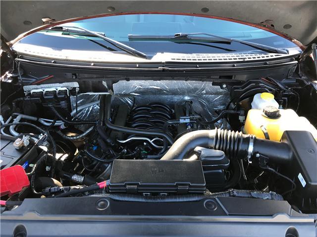 2014 Ford F-150 XLT (Stk: 7282) in Edmonton - Image 9 of 20