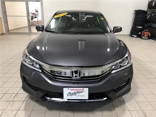 2016 Honda Accord EX-L (Stk: 16513A) in Steinbach - Image 2 of 11