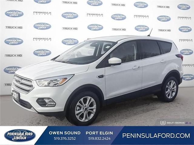 2019 Ford Escape SE (Stk: 19ES28) in Owen Sound - Image 1 of 24