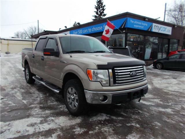 2010 Ford F-150 XLT (Stk: 190244) in North Bay - Image 1 of 14