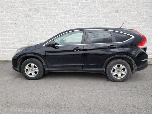 2014 Honda CR-V LX (Stk: 19P049) in Kingston - Image 1 of 1