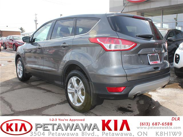 2013 Ford Escape SE (Stk: 19017-1) in Petawawa - Image 2 of 15