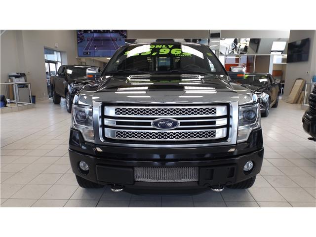 2013 Ford F-150 Platinum (Stk: 18-6431) in Kanata - Image 2 of 15
