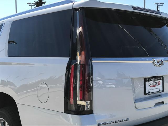 2019 Cadillac Escalade ESV Luxury (Stk: 9D21140) in North Vancouver - Image 12 of 23