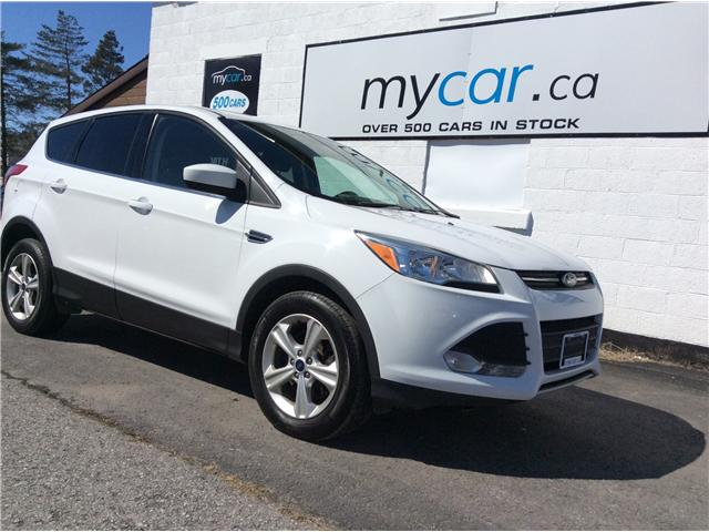 2016 Ford Escape SE (Stk: 190300) in Richmond - Image 1 of 20