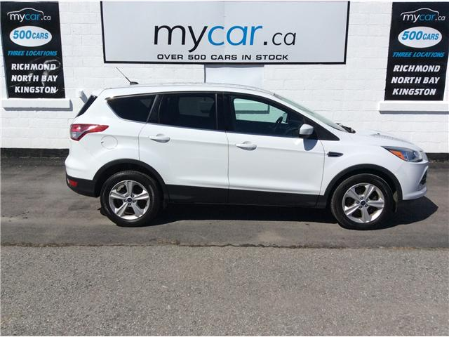 2016 Ford Escape SE (Stk: 190300) in Richmond - Image 2 of 20