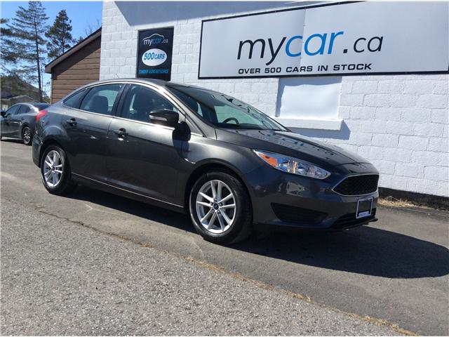 2015 Ford Focus SE (Stk: 190290) in Richmond - Image 1 of 19