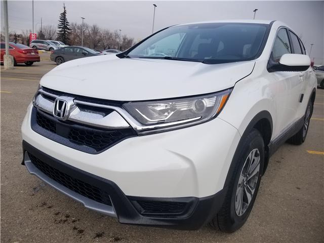 2019 Honda CR-V LX (Stk: 2190710) in Calgary - Image 8 of 9