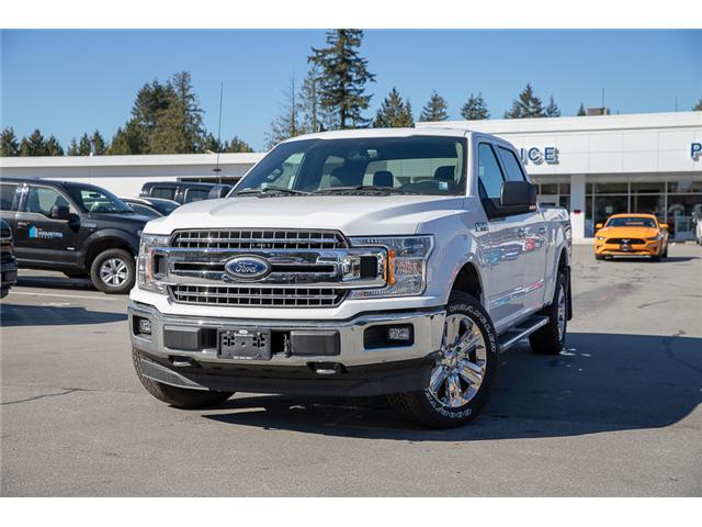 2019 Ford F-150 XLT (Stk: 9F13974) in Vancouver - Image 3 of 30