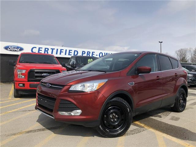 2015 Ford Escape SE (Stk: EX19045A) in Barrie - Image 1 of 21