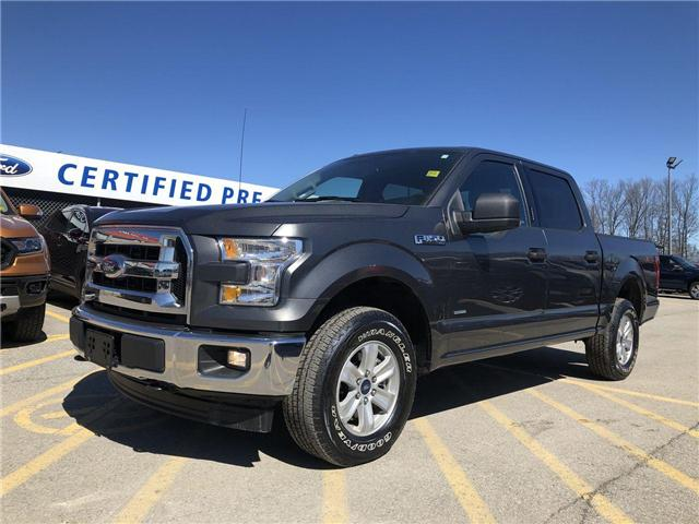 2017 Ford F-150 XLT (Stk: FP19217A) in Barrie - Image 1 of 24