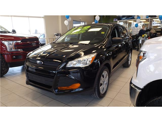 2016 Ford Escape S (Stk: P47630) in Kanata - Image 1 of 15