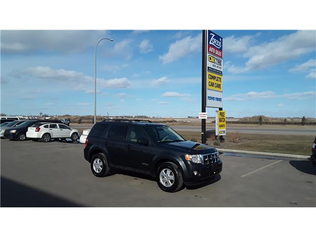 2008 Ford Escape XLT (Stk: P359-1) in Brandon - Image 1 of 12