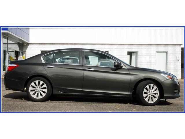 2015 Honda Accord EX-L (Stk: OP3810) in Kitchener - Image 2 of 12