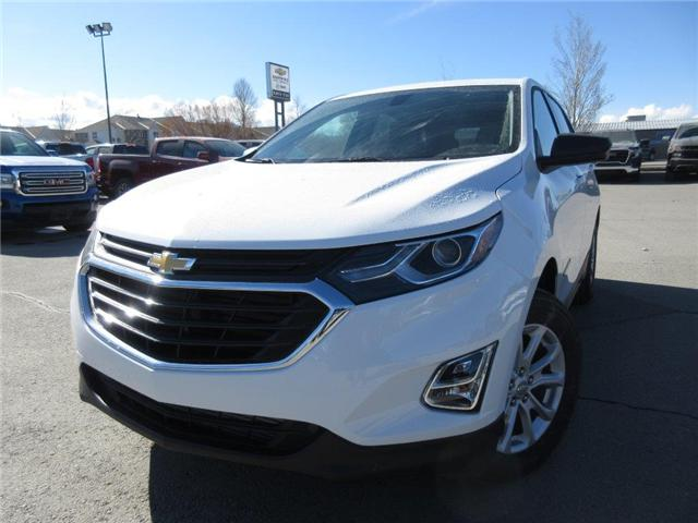 2019 Chevrolet Equinox LS (Stk: 1X49582) in Cranbrook - Image 1 of 17