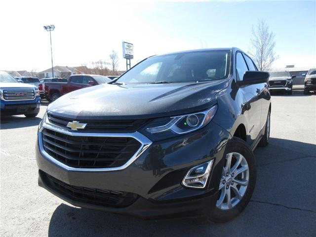 2019 Chevrolet Equinox LS (Stk: 1X48574) in Cranbrook - Image 1 of 17