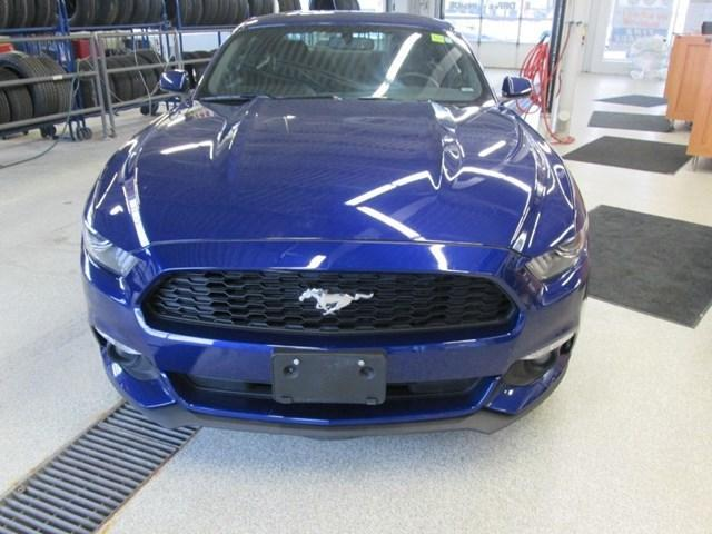 2015 Ford Mustang V6 (Stk: 205641) in Gloucester - Image 8 of 14