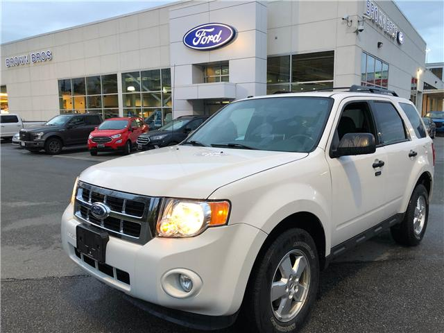 2012 Ford Escape XLT (Stk: LP19103) in Vancouver - Image 1 of 21
