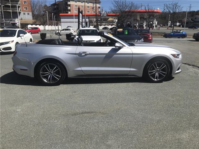 2017 Ford Mustang EcoBoost Premium (Stk: -) in Lower Sackville - Image 3 of 18