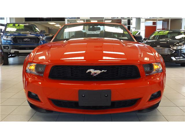 2012 Ford Mustang V6 Premium (Stk: 19-1281) in Kanata - Image 2 of 15