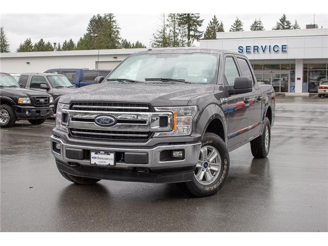2018 Ford F-150 XLT (Stk: P8593) in Vancouver - Image 3 of 30